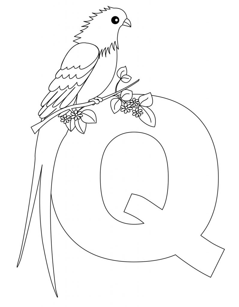 Alphabet Coloring Pages Animals