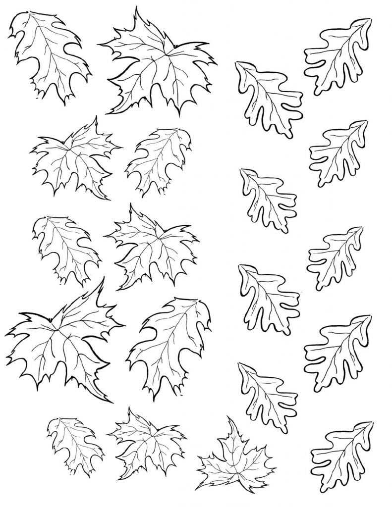 Autumn Coloring Pages Leaves