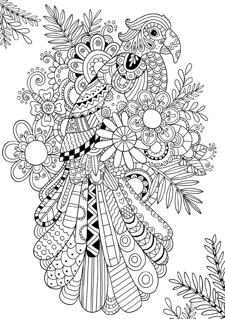 Bird Coloring Pages Advanced