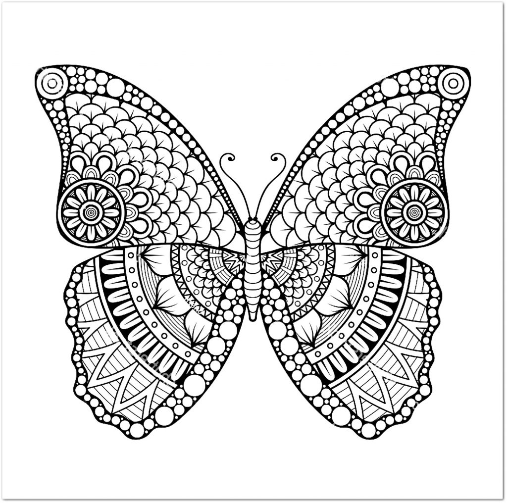 Butterfly Coloring Sheet Mandala