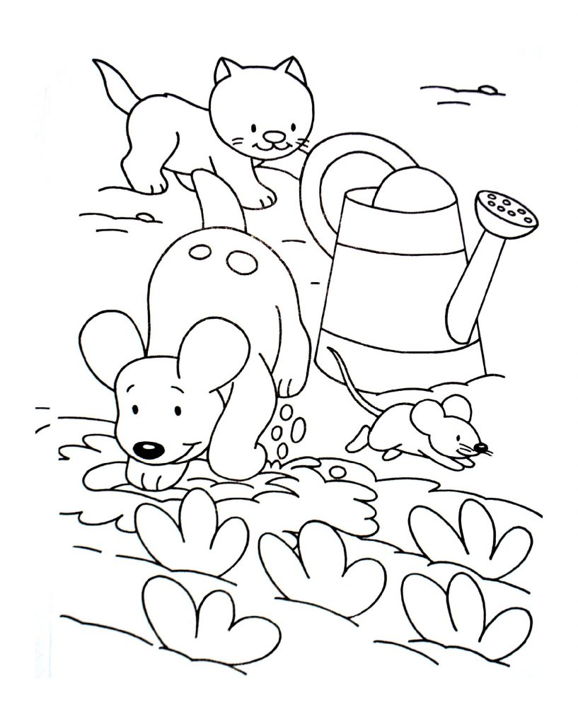 Cat And Dog Coloring Pages Pet