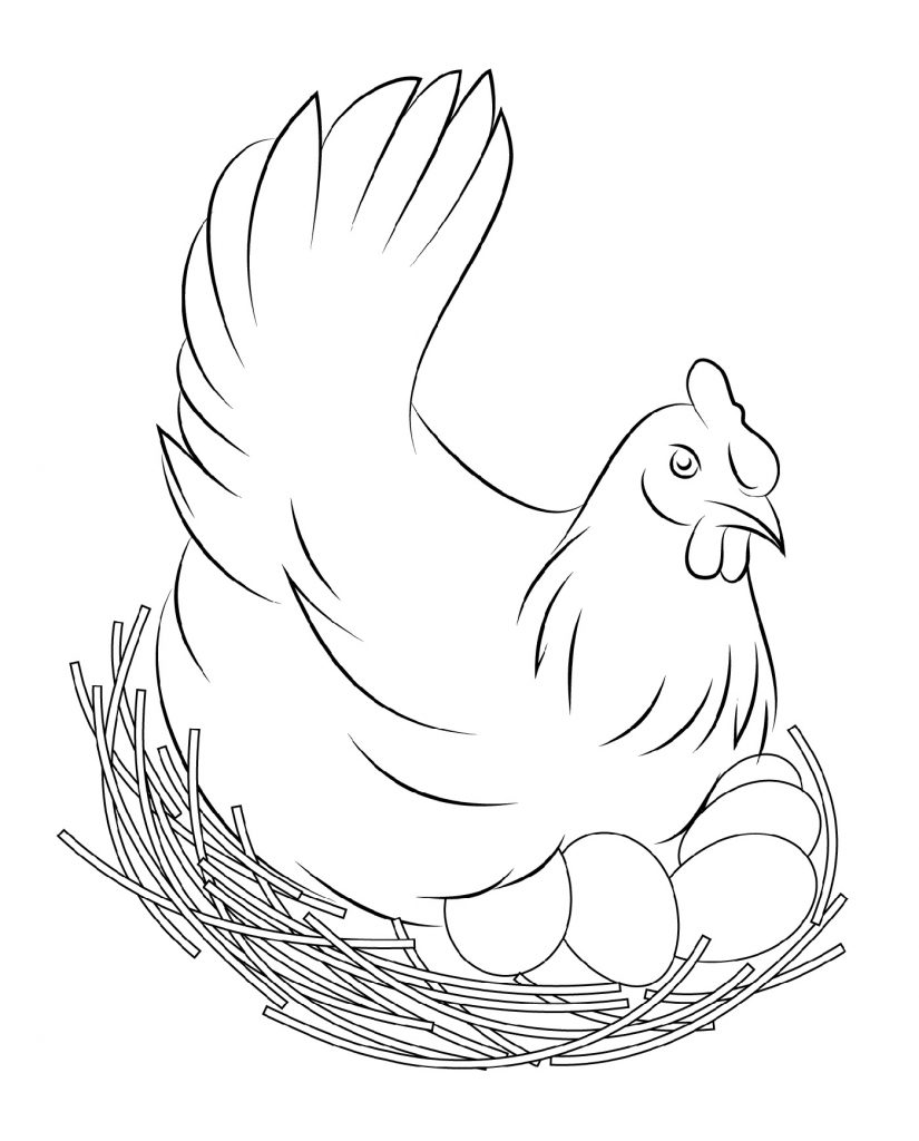 Chicken Coloring Pages Flapping