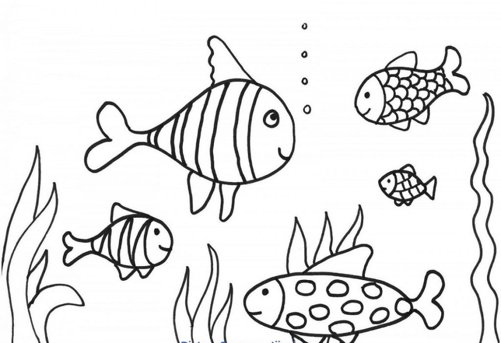 Coloring Activity For Grade 1 Fish