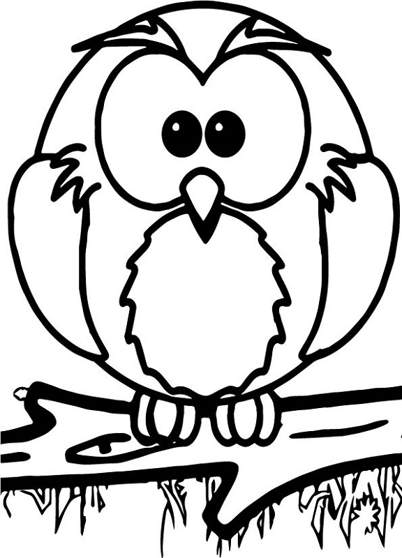 Coloring Activity For Grade 1 Owl