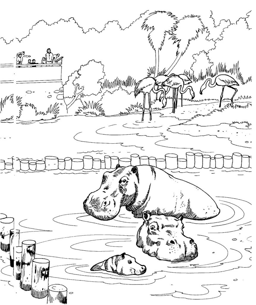 Coloring Worksheets Zoo