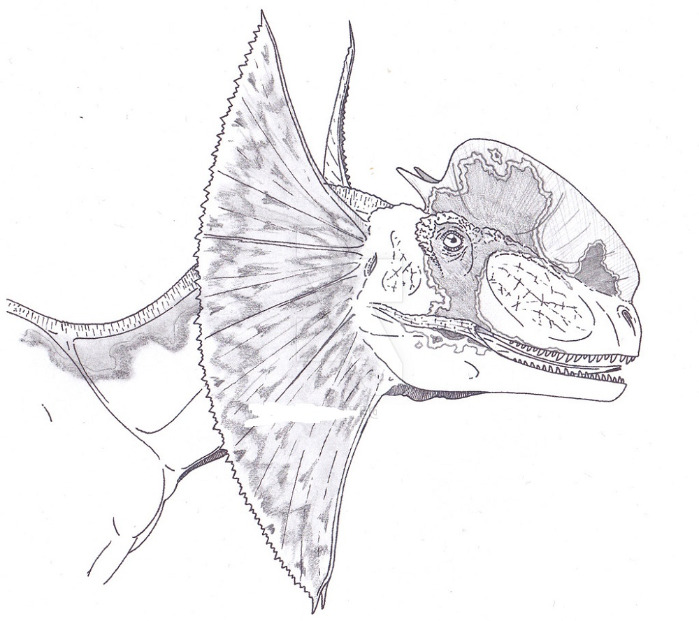 Dilophosaure From Jurassic Park Coloring Pages