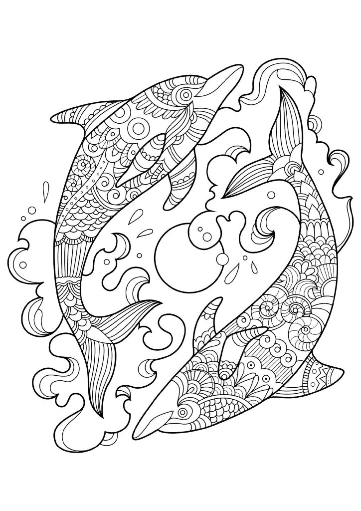 Cute And Fun Dolphin Coloring Pages 101 Coloring