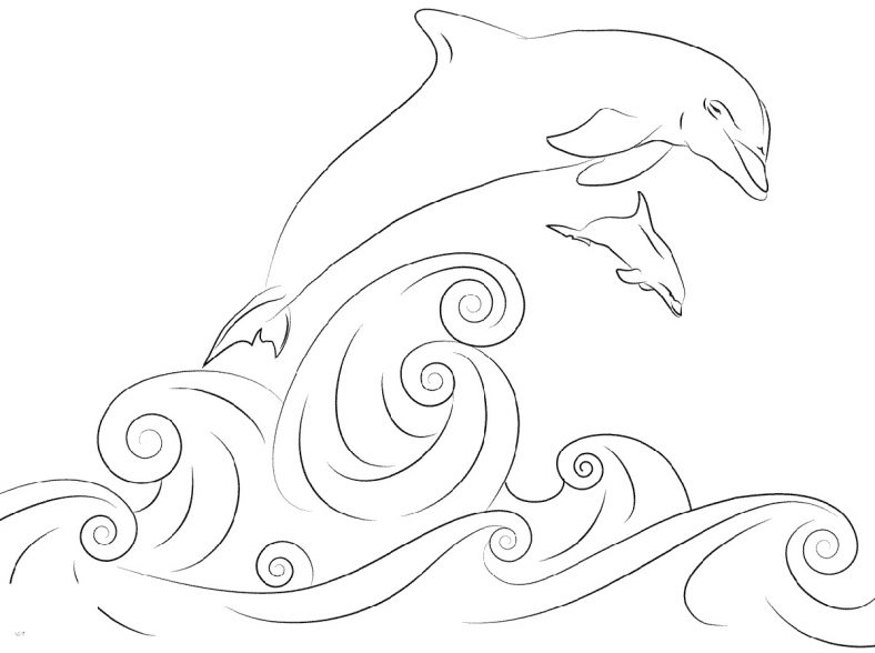 Dolphin Coloring Pages Jumping