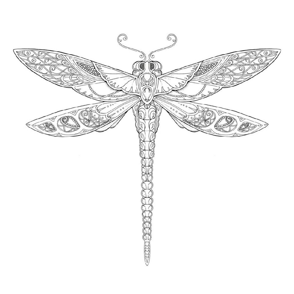 Dragonfly Coloring Page For Adults