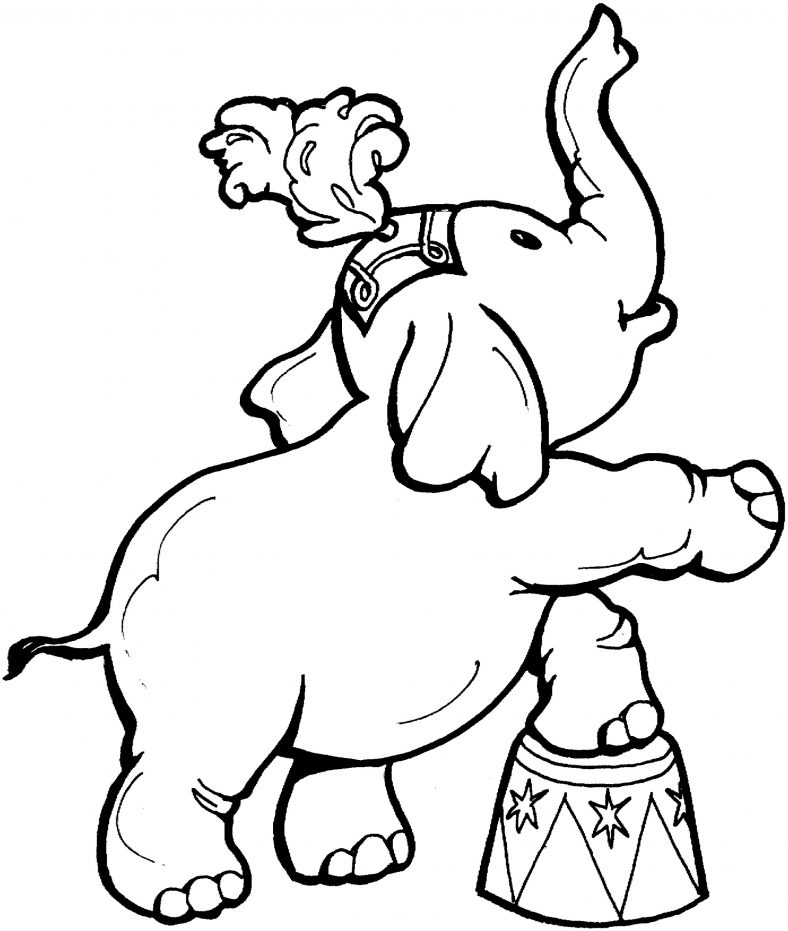 Elephant Coloring Pages Circus