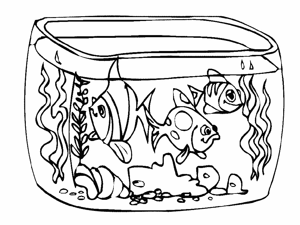 Fish Coloring Pages Aquarium