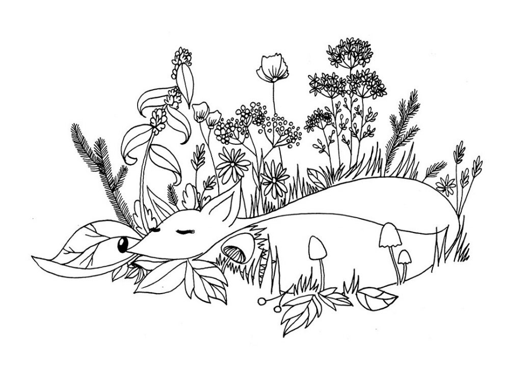 Fox Coloring Pages Sleeping