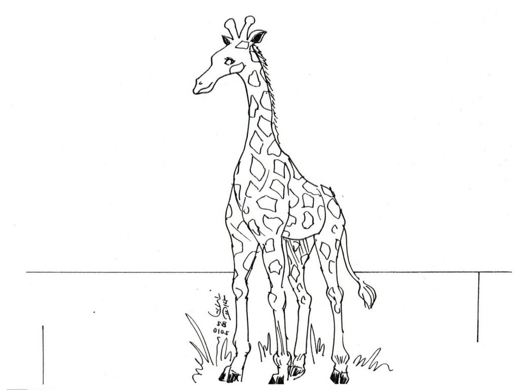 Giraffe Coloring Pages Zoo