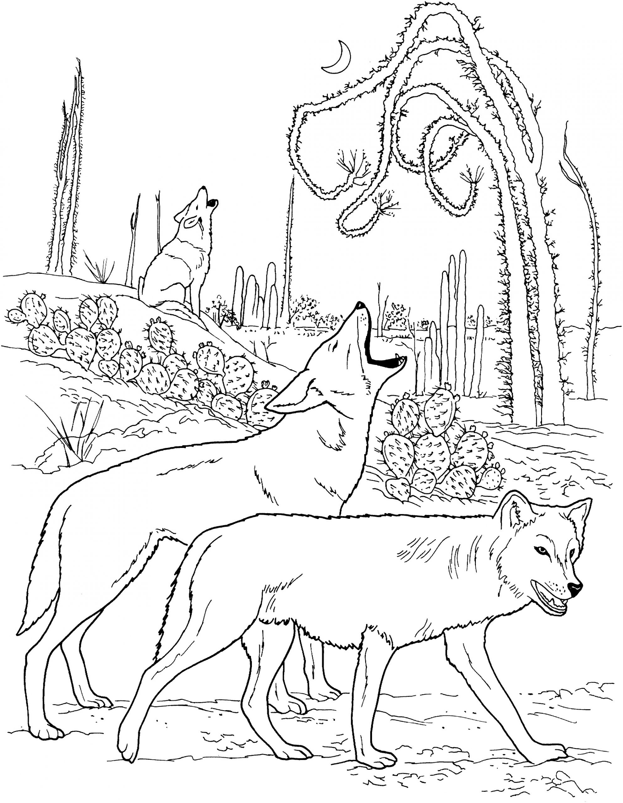 wolf coloring pages howling at moon Coloring4free - Coloring4Free.com | 2560x1986