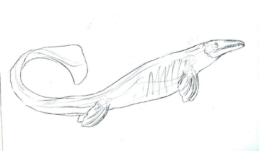 Jurassic World Coloring Pages Mosasaur