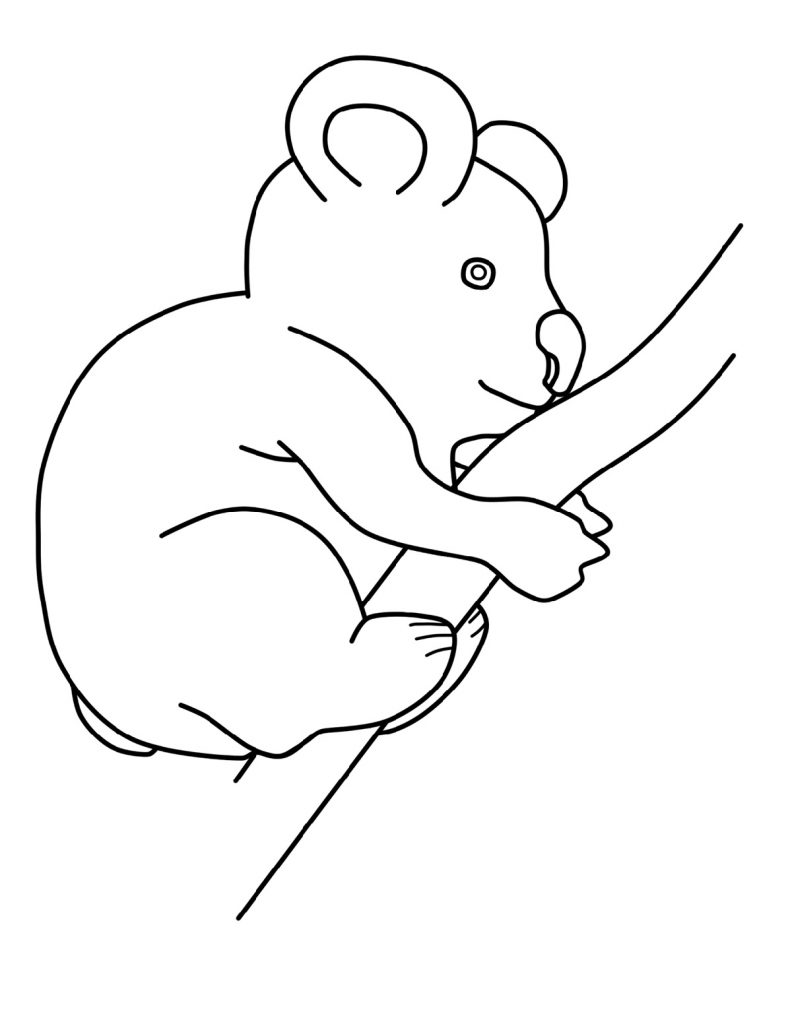 Koala Coloring Pages Baby