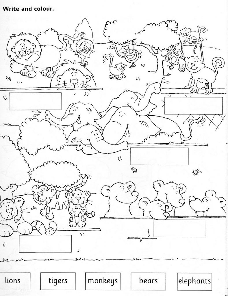Learning Zoo Animal Coloring Pages
