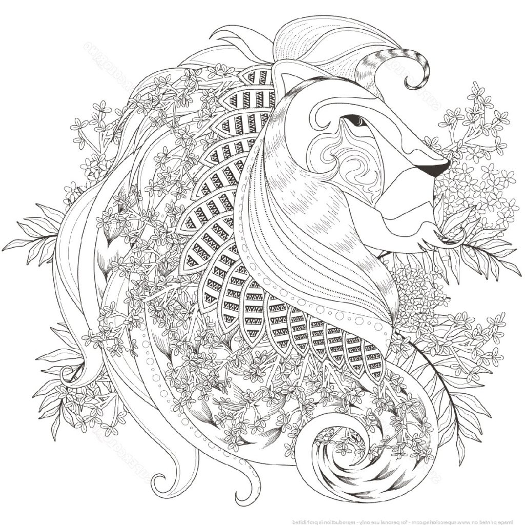 Lion Coloring Pages Zentangle