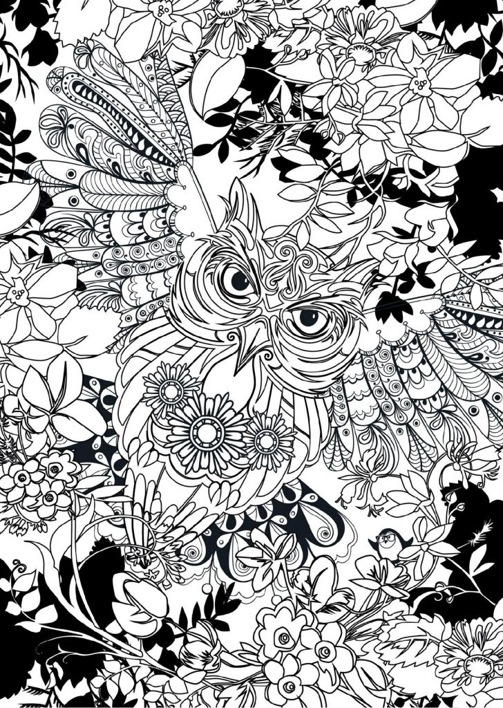 Printable Owl Coloring Pages Hard And Easy 101 Coloring