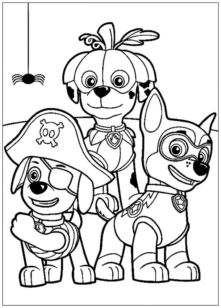 Paw Patrol Coloring Cartoon