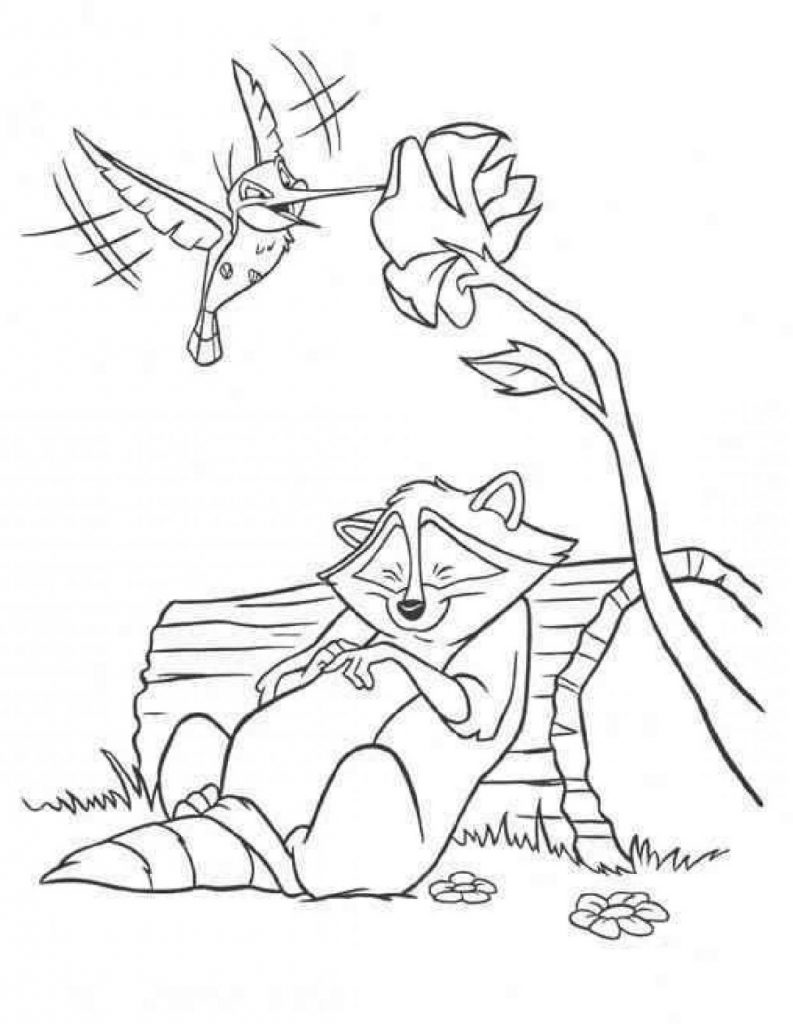 Pocahontas Coloring Pages Raccoon