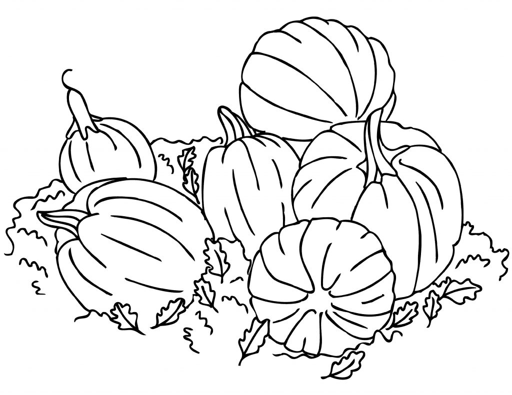 Pumpkin Coloring Pages Autumn