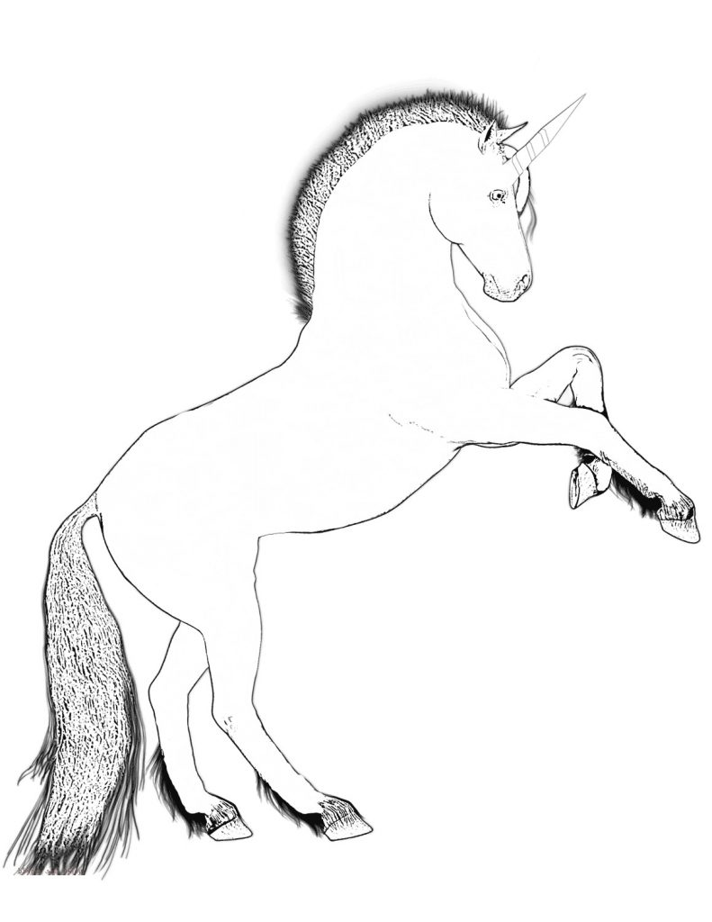 Rearing Unicorn Coloring Book