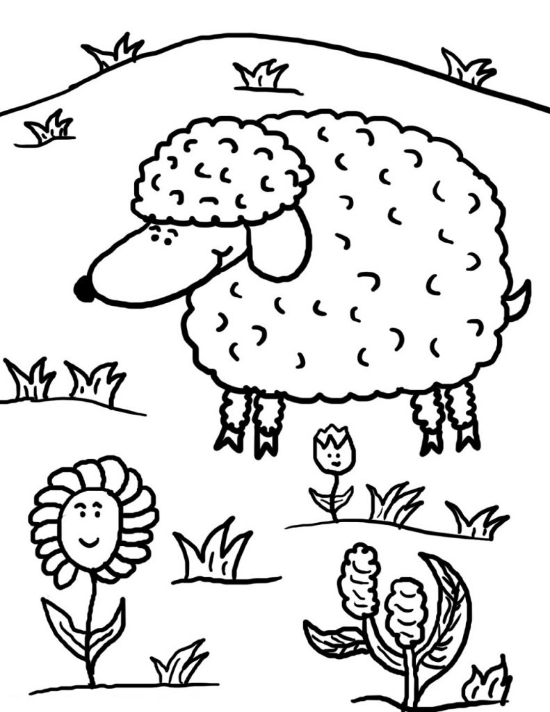 Sheep Coloring Page For Kids