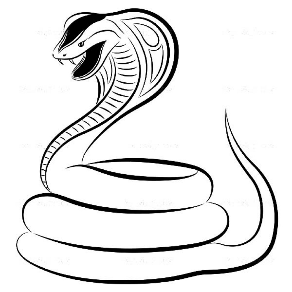 Snake Coloring Pages King Cobra