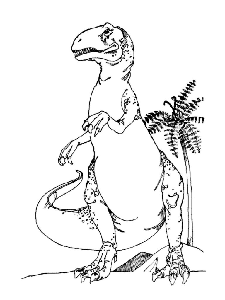 T Rex Coloring Page Animal