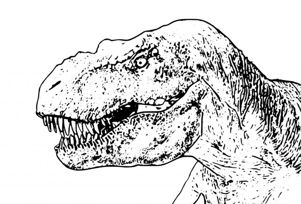 T Rex Coloring Page Dinosaur