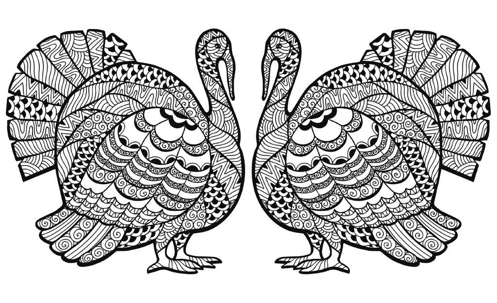 Turkey Coloring Sheet Hard