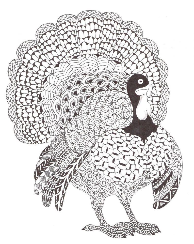 Turkey Coloring Sheet Zentangle
