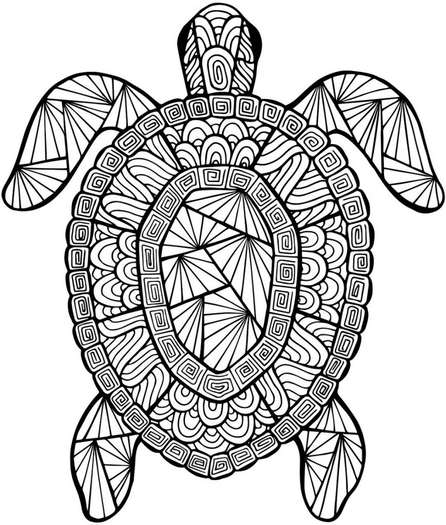 Turtle Coloring Pages for Kids and Adults | 101 Coloring