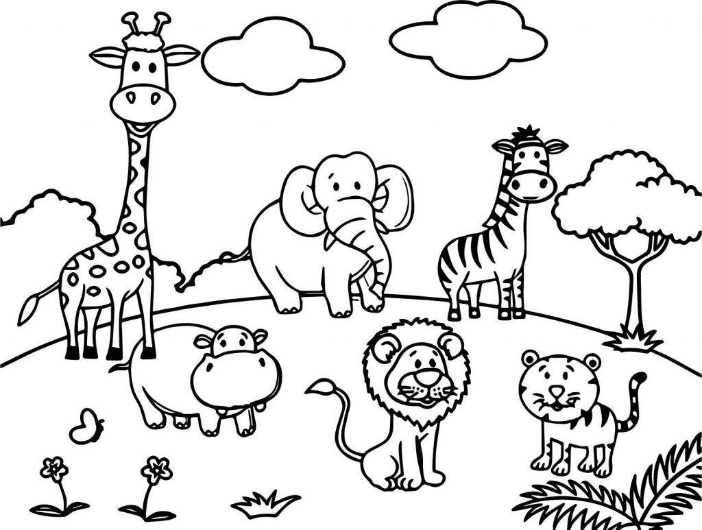 Zoo Animal Coloring Pages Preschool