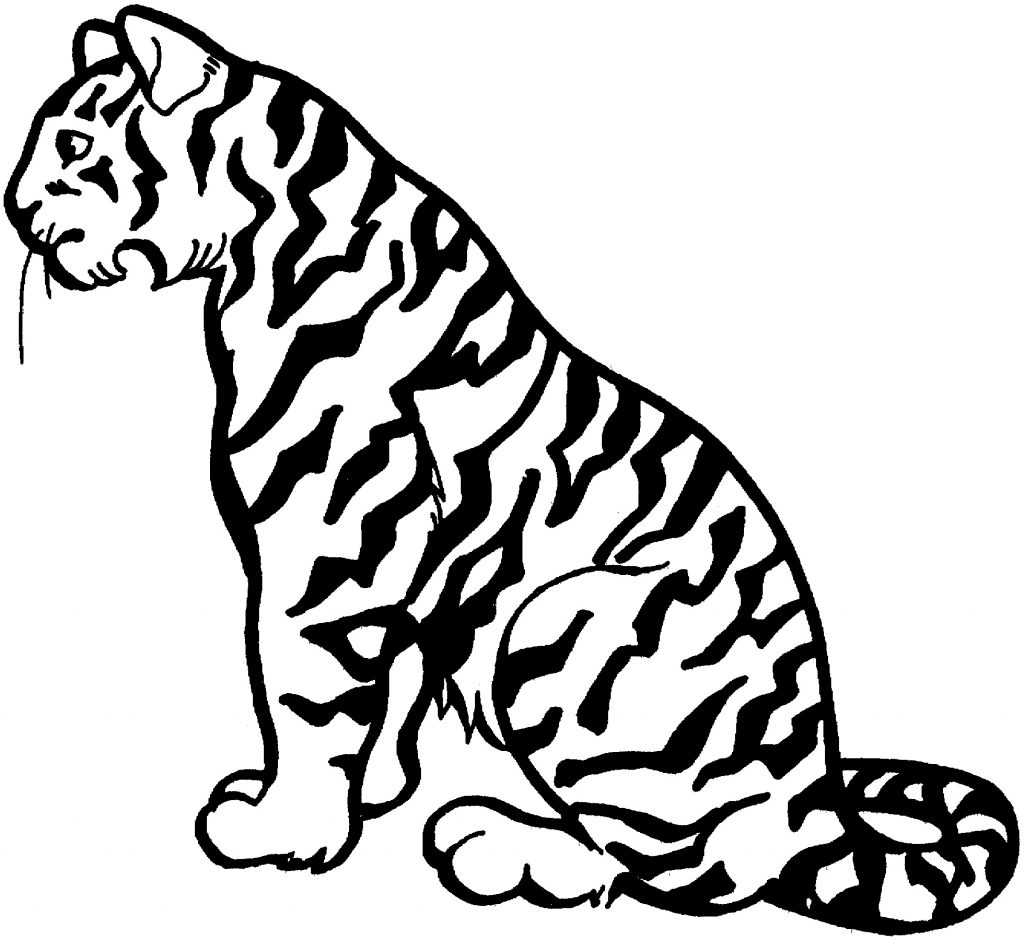 Zoo Tiger Coloring Pages